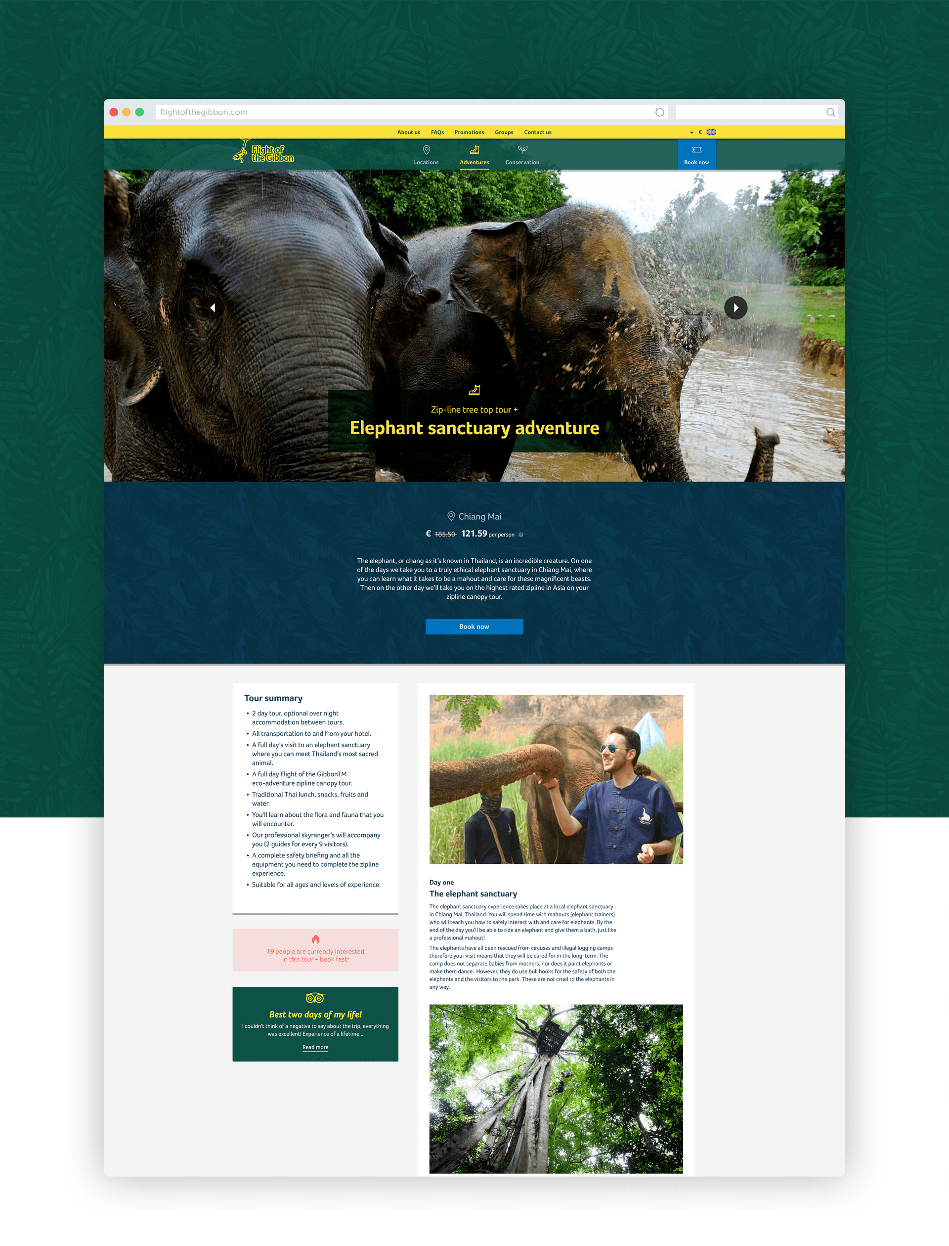 Flight of the Gibbon website design