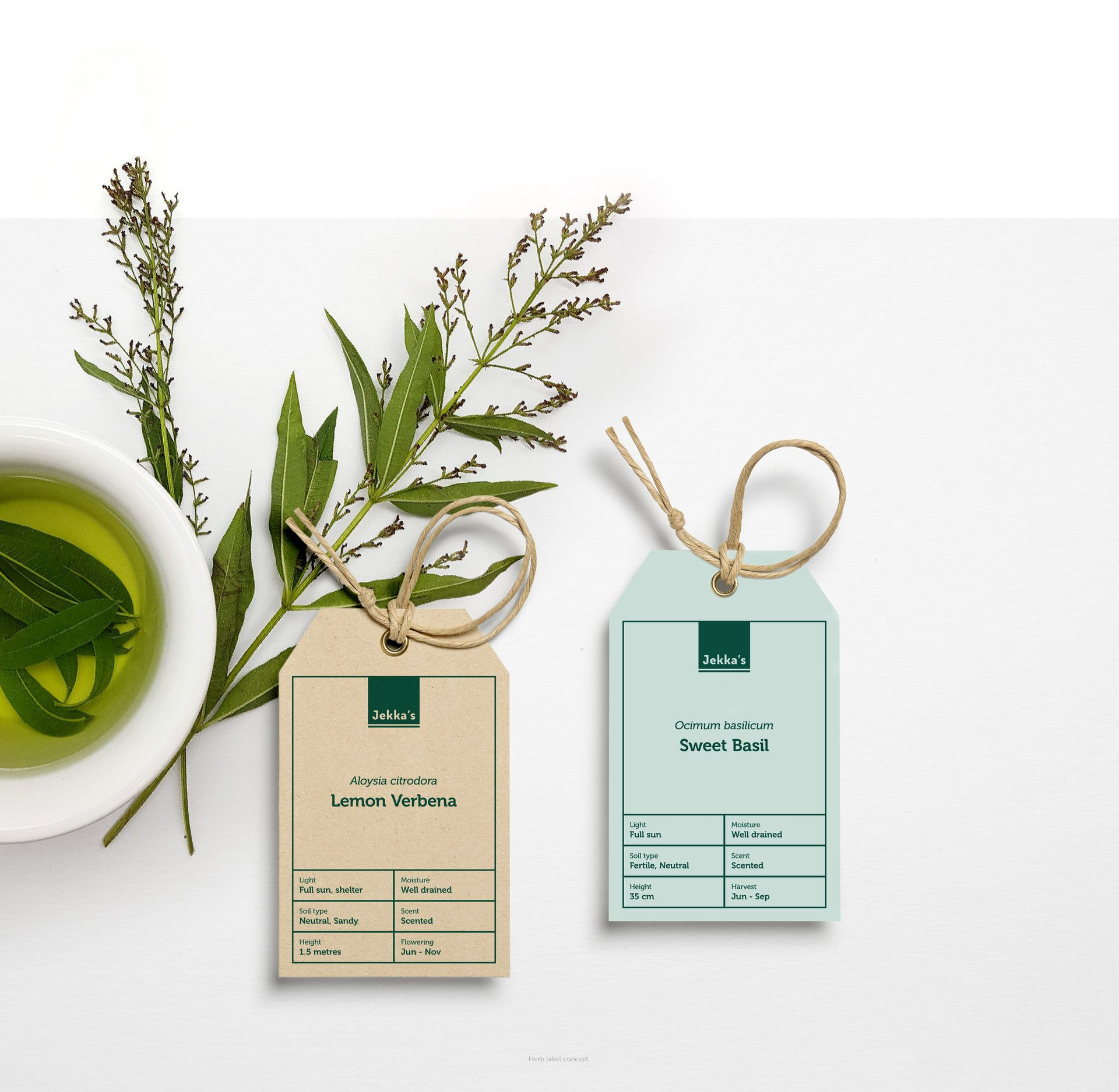 Jekka's herb label designs